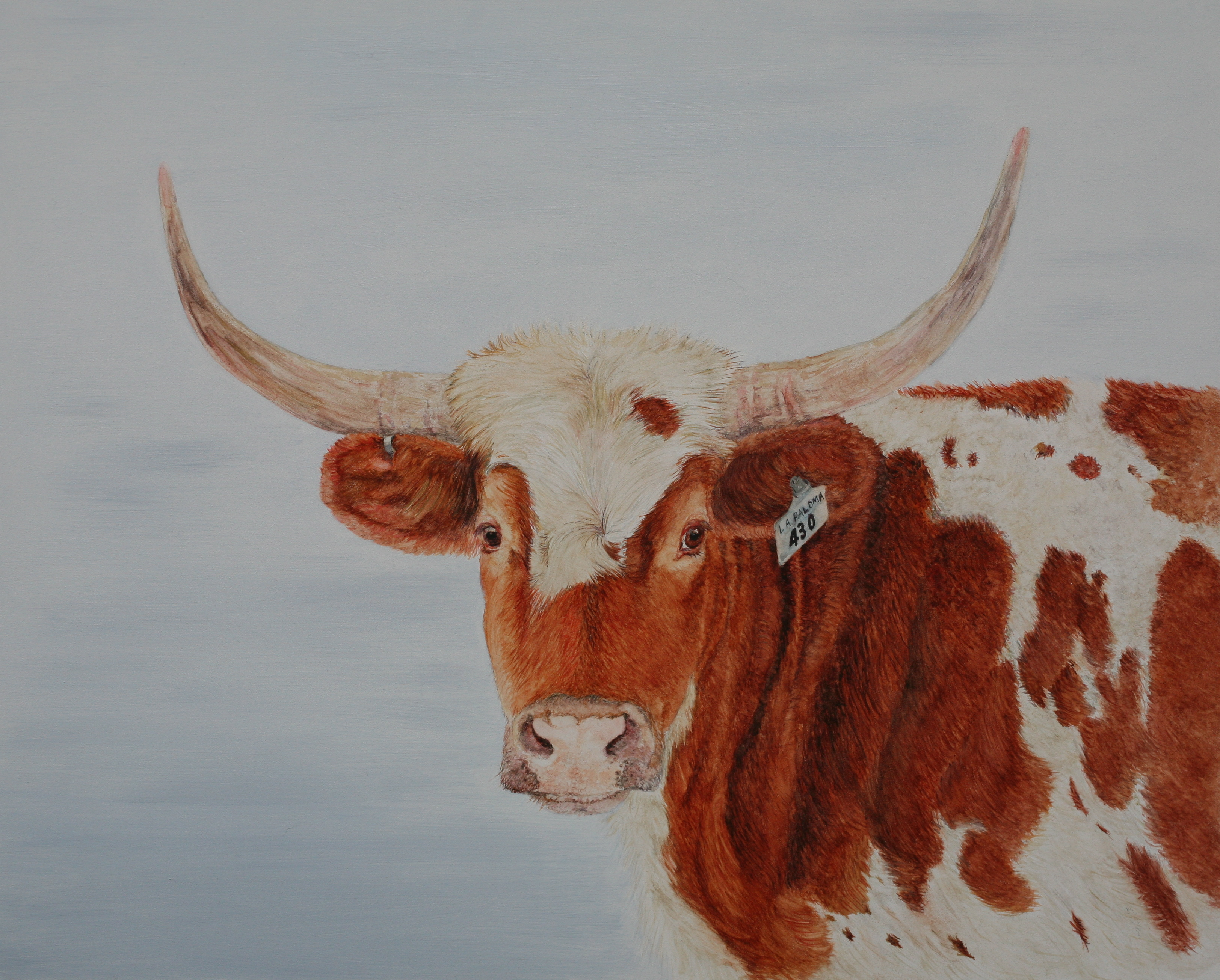 Watercolor artist in texas - Watercolor Cow Painting