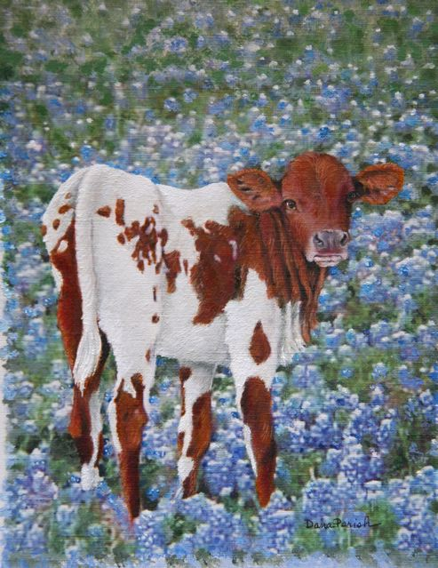 Longhorn Calf in Bluebonnets